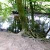 River Bovey at Parke