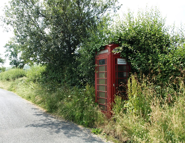 Overgrown phone box